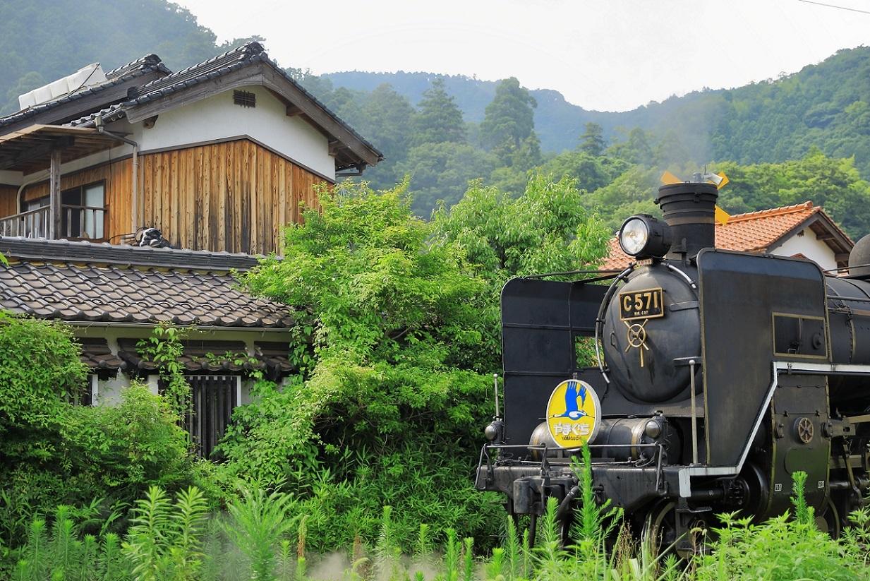 2017yamaguti43.jpg