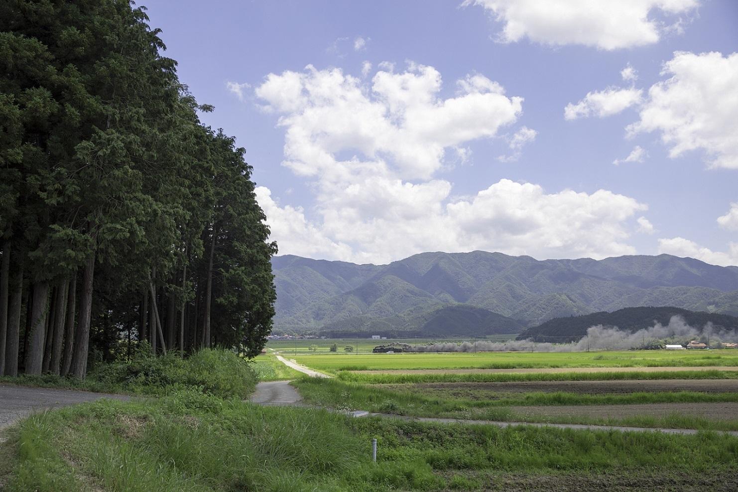 2017yamaguti80.jpg