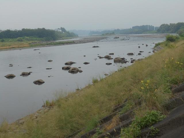 DSCN27830725大渡橋左岸上流.jpg