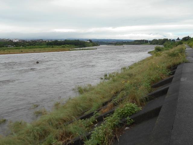 DSCN27860726大渡橋左岸上流.jpg