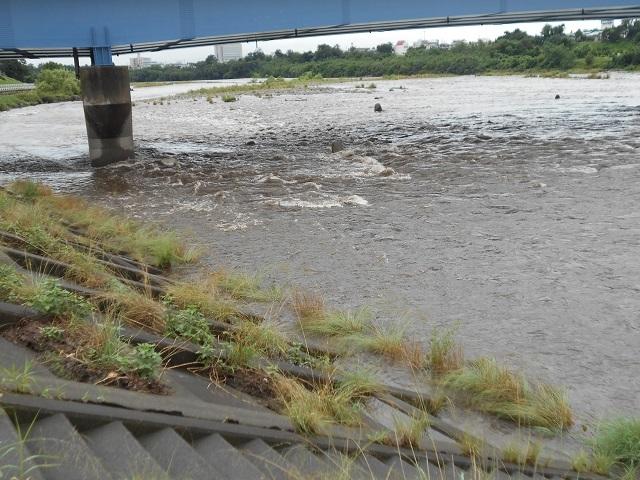 DSCN27880726大渡橋ー1.jpg