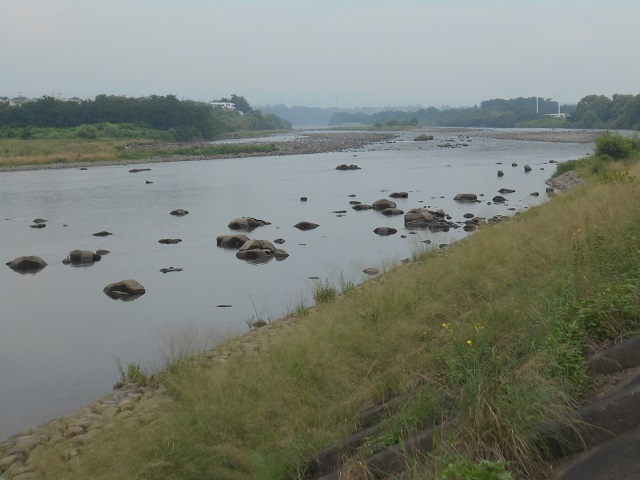 DSCN27940728大渡橋左岸上流.jpg