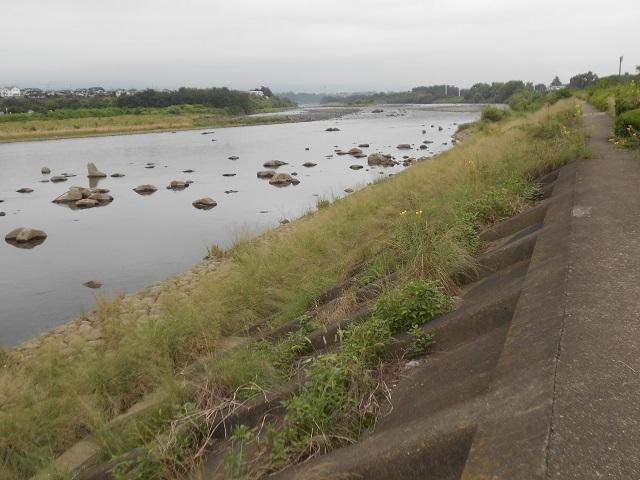 DSCN27980729大渡橋左岸上流.jpg
