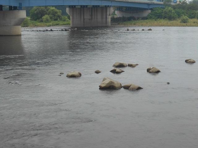 DSCN28190801大渡橋.jpg
