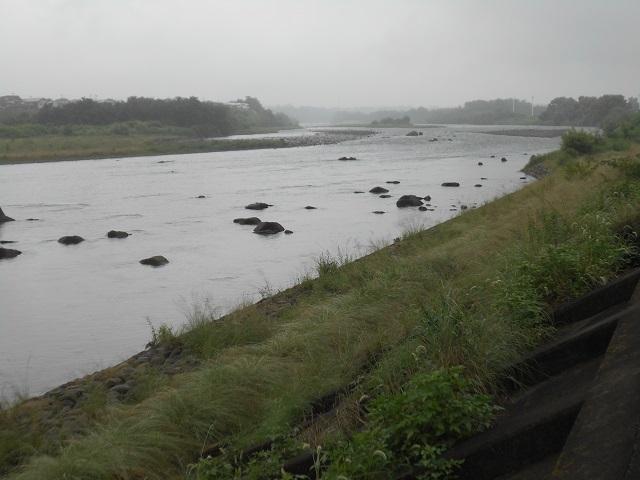 DSCN28240802大渡橋左岸上流
