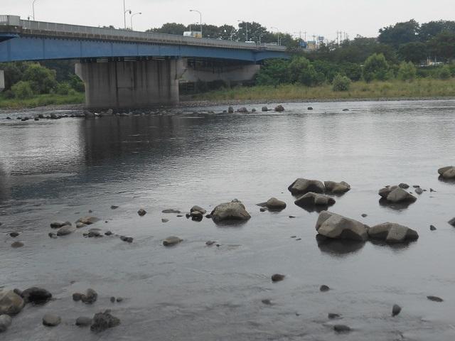 大渡橋DSCN28290803.jpg