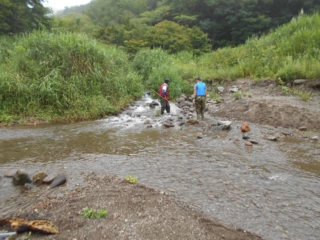 DSCN28320803市役所自然環境調査立ち合い大嶋鈴木赤城白川.jp