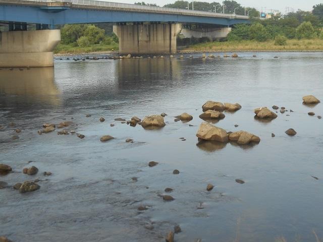 DSCN28370804大渡橋.jpg