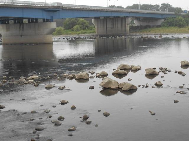 DSCN28450806大渡橋.jpg