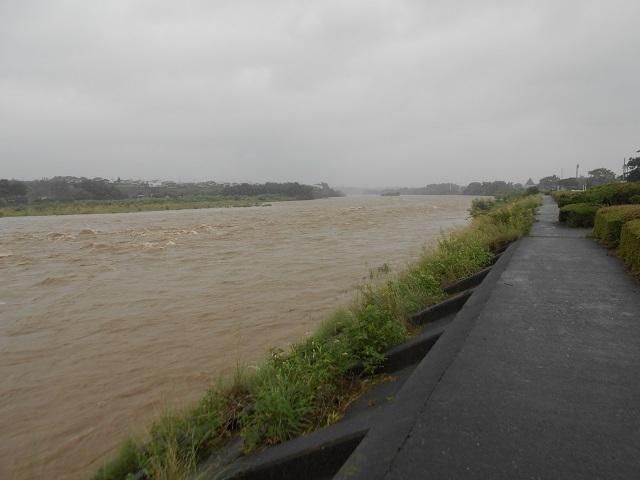 DSCN28530808大渡橋左岸上流.jpg