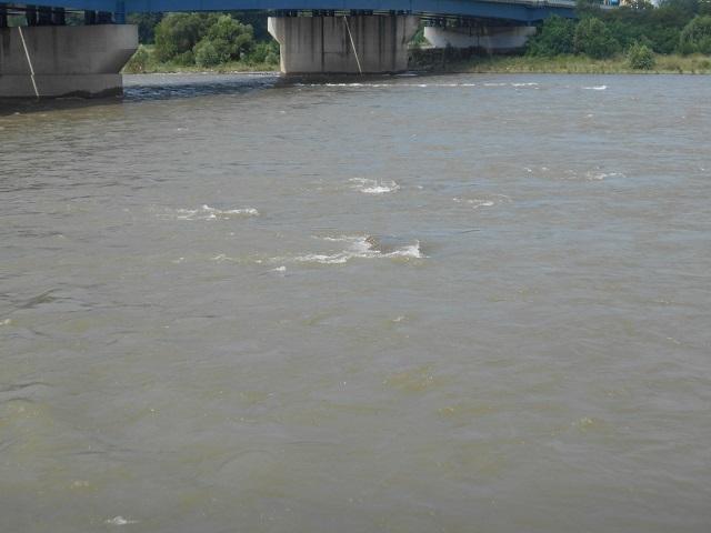 DSCN28610811大渡橋.jpg