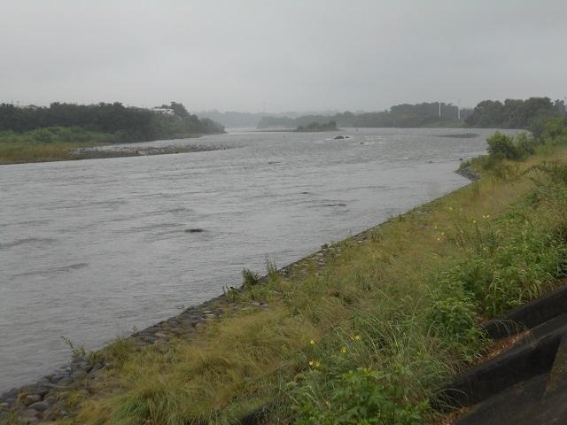 DSCN28680812大渡橋左岸上流.jpg