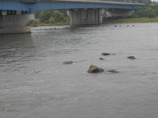 DSCN28690812大渡橋.jpg