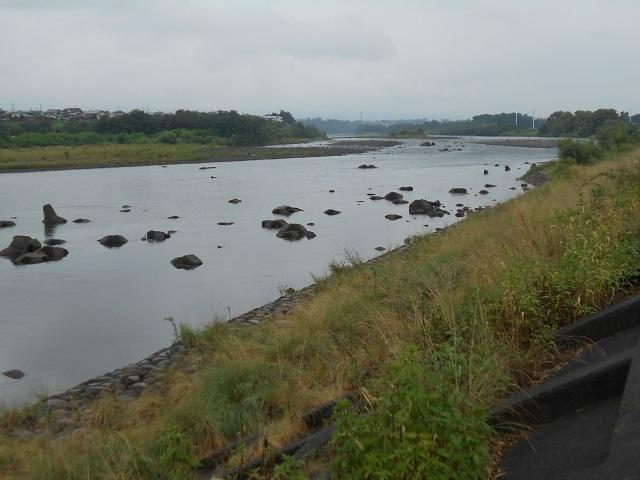 DSCN29880906大渡橋左岸上流.jpg