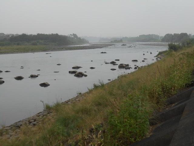 DSCN29920907大渡橋左岸上流.jpg