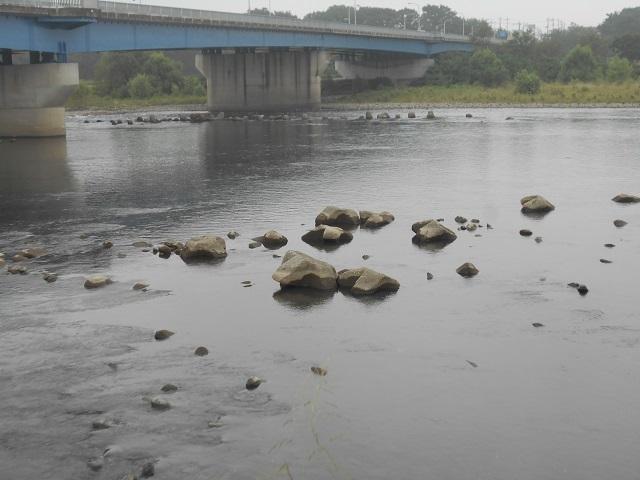 DSCN29930907大渡橋.jpg
