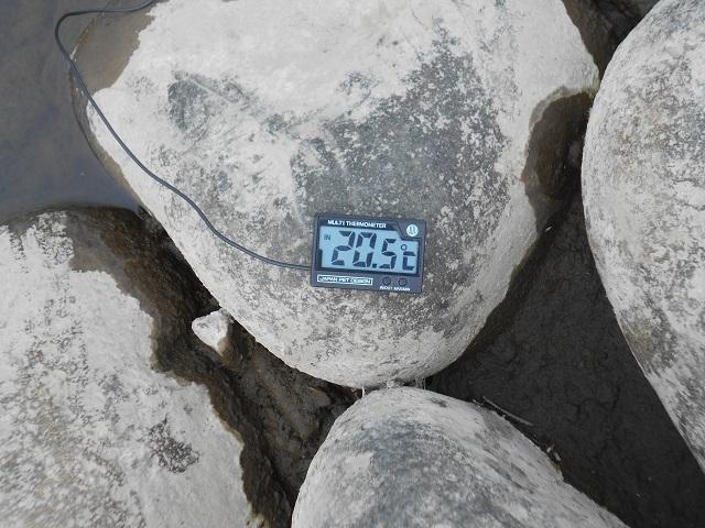 DSCN30200911大渡橋ー1.jpg