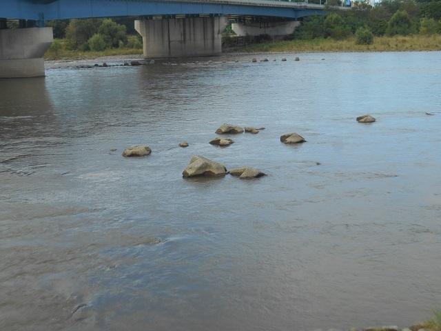 DSCN30540919大渡橋.jpg