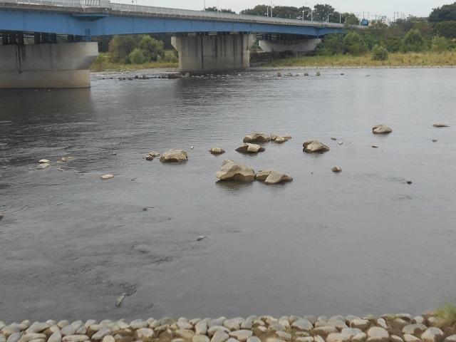 DSCN30580920大渡橋.jpg