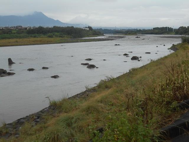 DSCN30730923大渡橋左岸上流.jpg