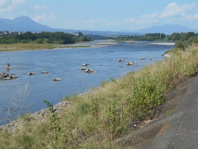 DSCN30880924大渡橋左岸上流.jpg