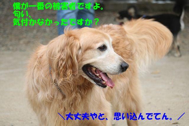 IMG_1854.jpg