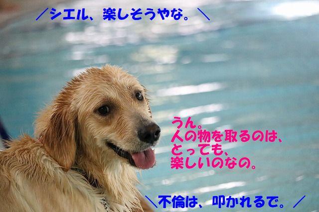 IMG_3148_20170822210829631.jpg