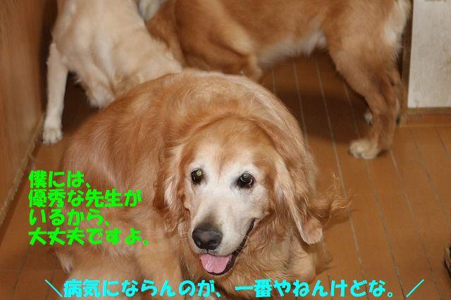 IMG_3840.jpg
