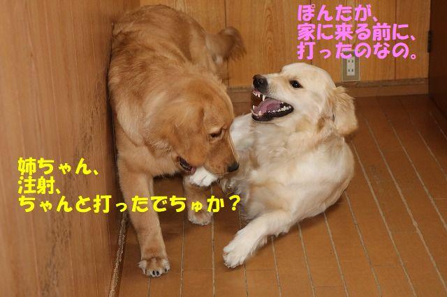 IMG_3847.jpg