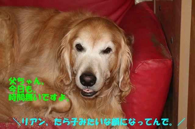 IMG_8969.jpg