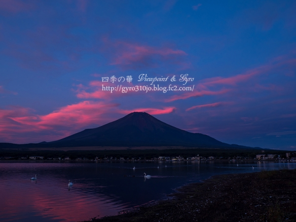 山中湖 F