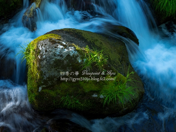吐竜の滝 J