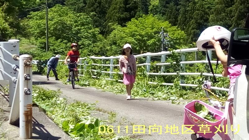 0611田向地区草刈り2