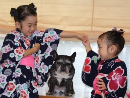 shibashi1.jpg