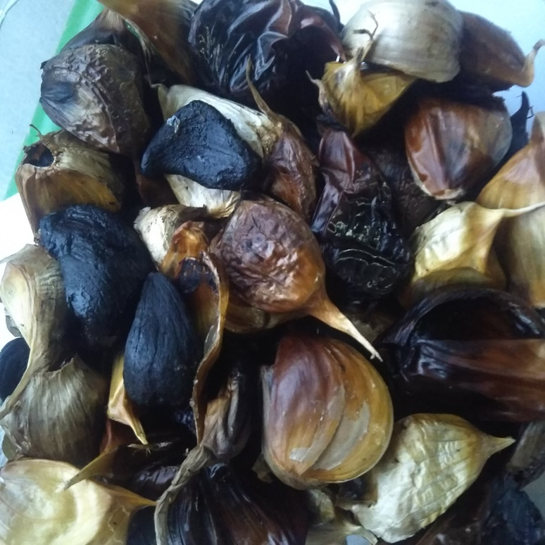 Garlic 20170921-2