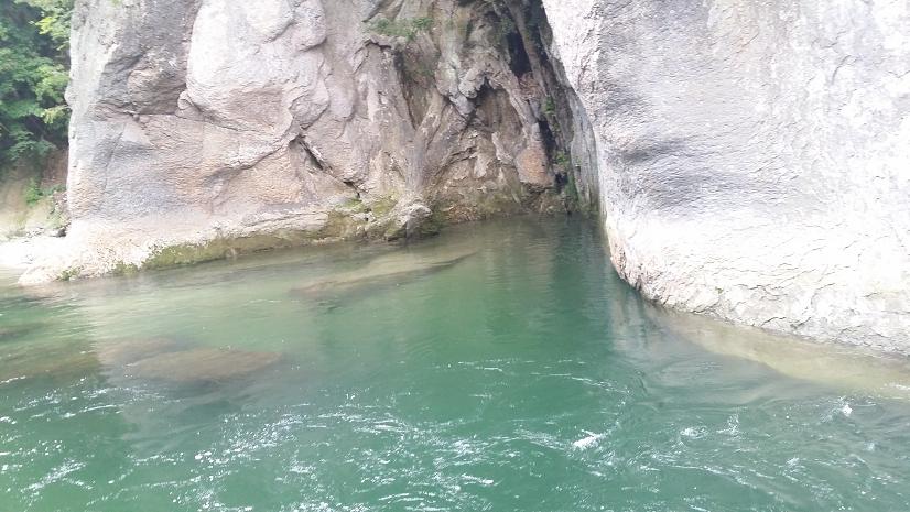 吹割の滝16