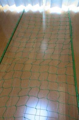 親木用圃場の網