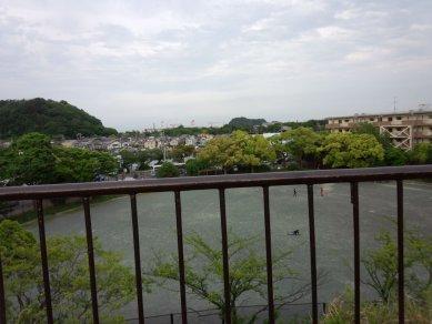室の木からの眺め(野島・夏島)