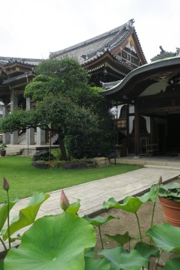 金蔵院・本堂