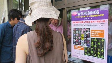 展示会での種の販売