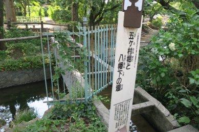 五ヶ村堀と八幡下の堰