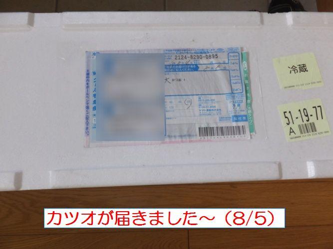 DSCF1330_1.jpg