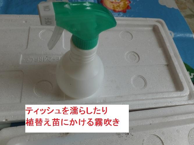 DSCF1791_1.jpg