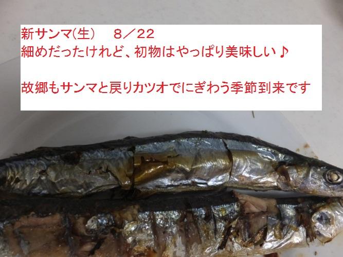DSCF1868_1.jpg