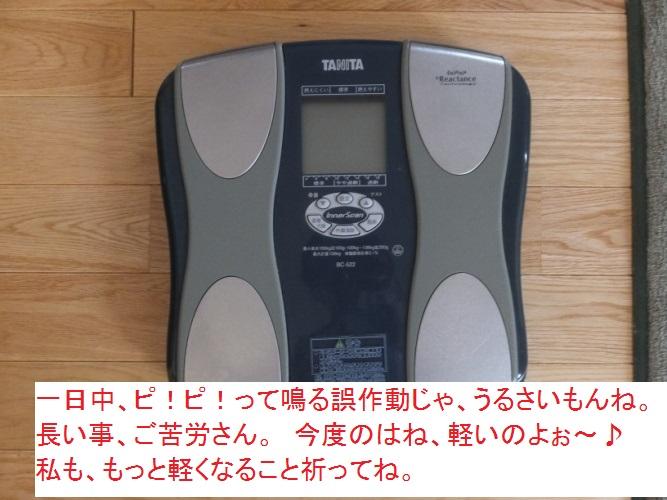 DSCF2232_1.jpg