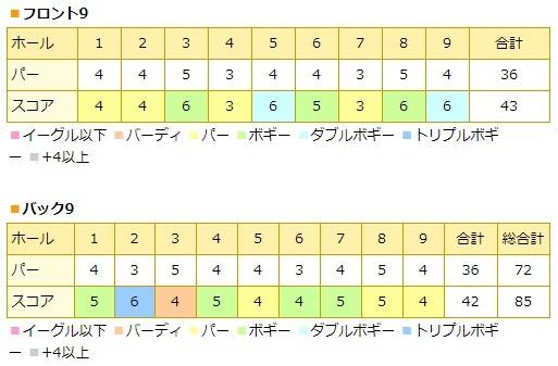 20170815_gold_kisarazu.jpg