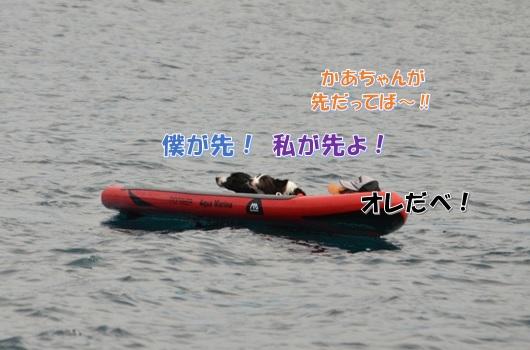 4_20170910183612de8.jpg