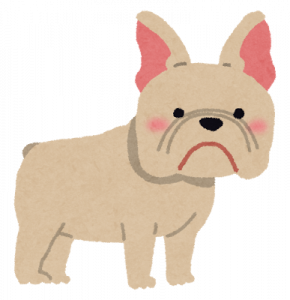 dog_french_bulldog_20170804135121066.png