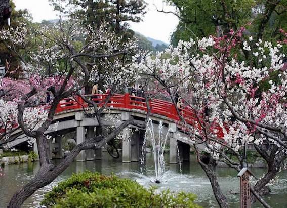 飛梅の心字池 橋