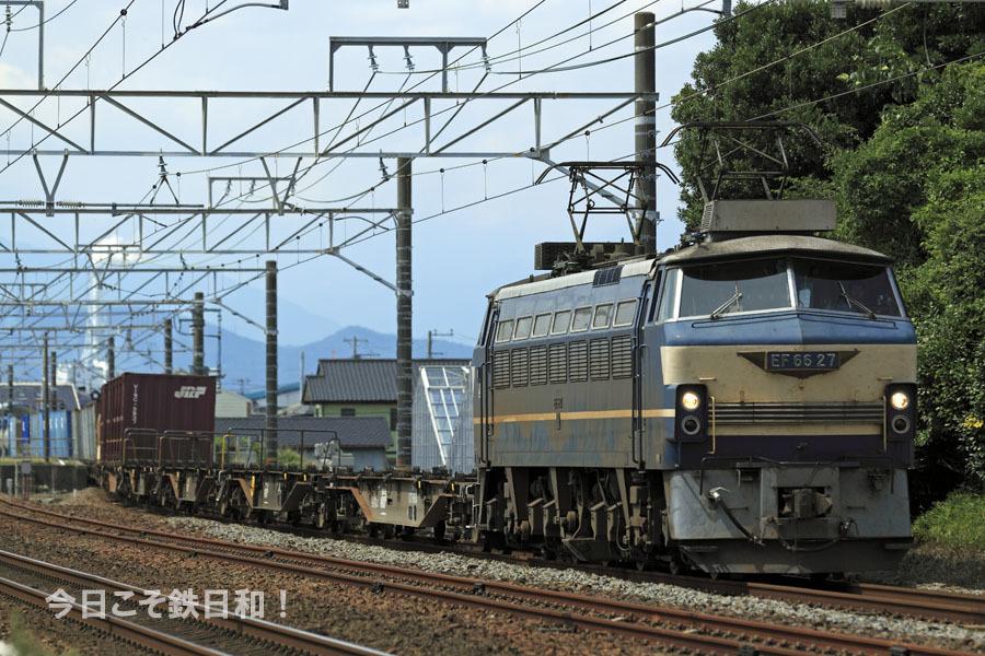_MG37007.jpg